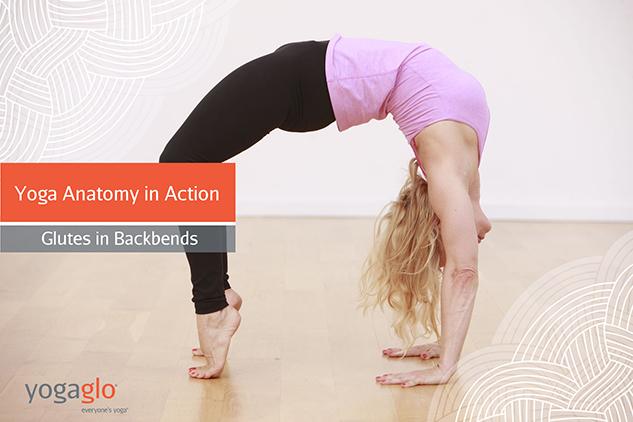 yogaanatomyglutesbackbends